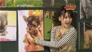 光井愛佳 よろセン! 2009/1/13
