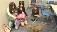 高橋愛・道重さゆみ 地上最大のTV動物園 2009/10/15