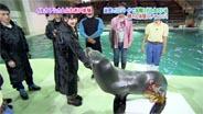 道重さゆみ 「ぷっ」すま 2009/10/20