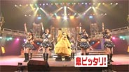 モーニング娘。 臨時発売!さんまのまんま大全集 2010/5/29