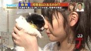 道重さゆみ あいまいナ! 2010/6/18