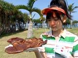 鈴木愛理 DVD「℃-ute 鈴木愛理 in 沖縄 AIRI'S CLASSIC」