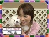060325wanko_yasu_s.jpg